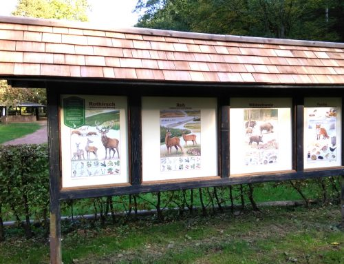 Neue Wildtiertafeln auf dem Jugendzeltplatz in Saarhölzbach